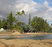 Peaceful beach in Hawai by dolphin