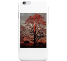 Sunset Reflective iPhone Case/Skin