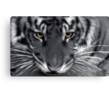 Intensity II Canvas Print