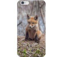 Kit Fox 2011-1 iPhone Case/Skin
