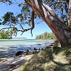Bruny Island's Cloudy Bay Lagoon entrance by gaylene
