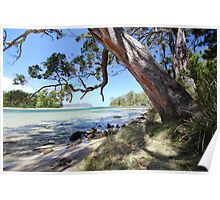 Bruny Island's Cloudy Bay Lagoon entrance Poster