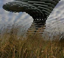 Singing Ringing Tree by Shaun Whiteman