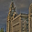 Storm over the Liver Building by PhotogeniquE IPA