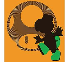 Koopa Troopa - Sunset Shores Photographic Print