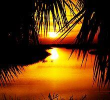 Cedar Key Sunset by Michelle Pearson