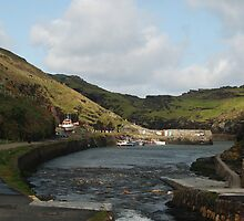 Harbour View, Boscastle by imageworld