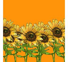 Sunflower Orange Photographic Print