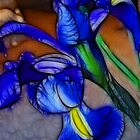 Iris by Francine Dufour Jones