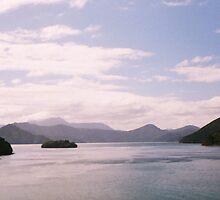 Picton  NZ by Lars