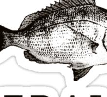Wallumai (Snapper) Sticker