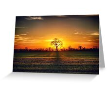 The sun and the tree Greeting Card