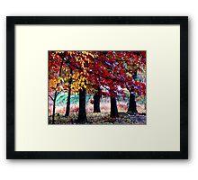 Simple Forest Scene Framed Print