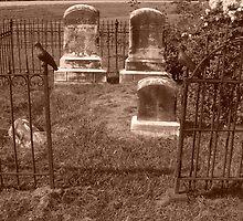 grave by lisaj