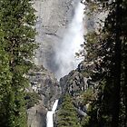 The Power and Beauty of Yosemite Falls by Carol Barona