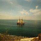 Sailing on the Ocean by ienemien