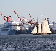 Bluenose II In Halifax by HALIFAXPHOTO