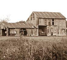 Rustic Texas by John Thomason