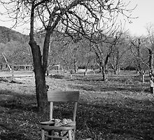 Lonely Chair in November by cemphotographs