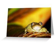 Buddha Frog Greeting Card