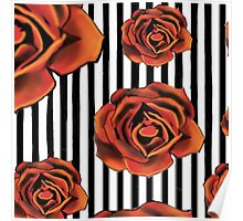 Pin striped rose Poster