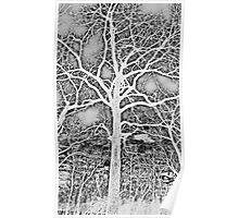 Negative Image Black and White Tree Branches Abstract Design Poster