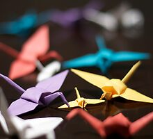Bevy of Cranes by James Troi