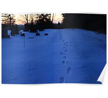 Footprints in the Snow Poster