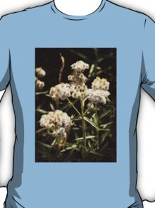 Western Pearly Everlasting T-Shirt