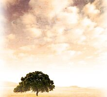 Old Landscape by ccaetano