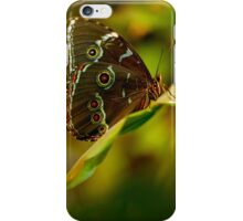 Big brown butterfly resting on the leaf iPhone Case/Skin