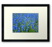 A Sea of Blue Framed Print