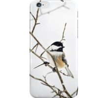 Charming Winter Chickadee iPhone Case/Skin