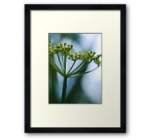 Lighter than Air.  Framed Print