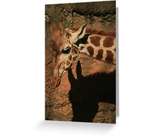 The Color of Shadows Greeting Card