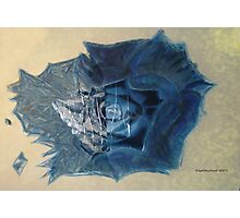The Blue Rose Photographic Print