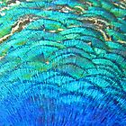 Peacock&#x27;s feathers... by Nuh Sarche