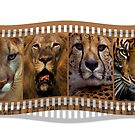 Big Cats by Cheri  McEachin