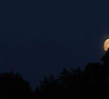 Harvest Moon... by LindaR