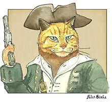 Pirate Cat by felissimha