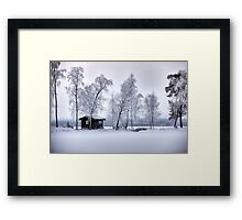 Winter's dress Framed Print