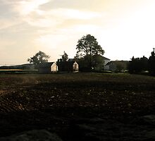Harvest at Buttonwood Farm by christiane