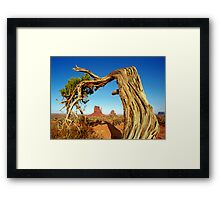 Monument Valley Tree Framed Print