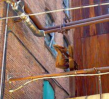 Vibrant Rust by sadeyedartist