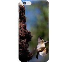 sacred kingfisher - f6 iPhone Case/Skin