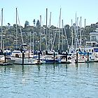 Boats @ Tiburon Harbor by Jack Walker