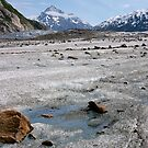 Glacier Melt  by Robert Elliott