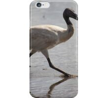 The Ibis with a little fish iPhone Case/Skin