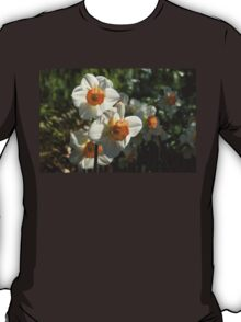Sunny Side Up - Daffodils Blooming in a Fabulous Spring Garden T-Shirt