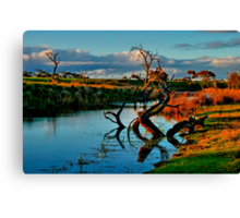 """Evening Mirror"" Canvas Print"